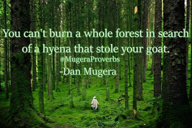 Quotes by Dan Mugera, wisdom quotes, african quotes