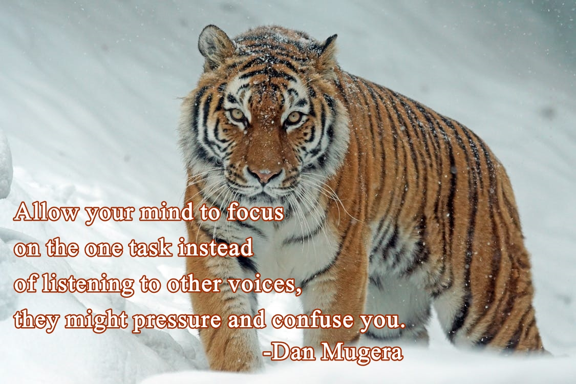 Quotes by Dan Mugera, life quotes, focus quotes, steadfastness quotes