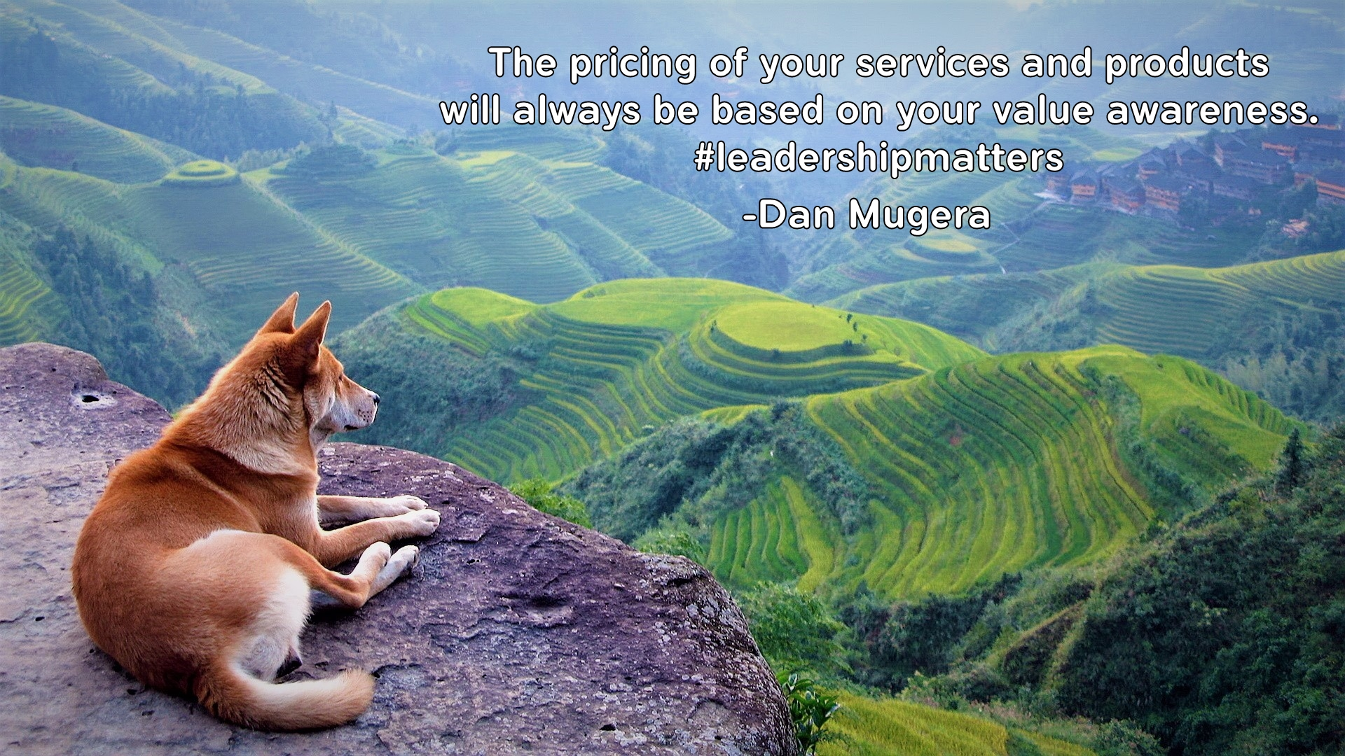 Quotes by Dan Mugera, life quotes, leadership quotes, awareness quotes